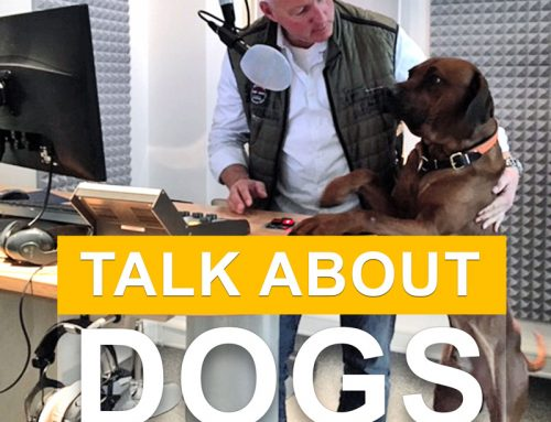 PODCAST DOGS